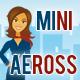 MiniAeross